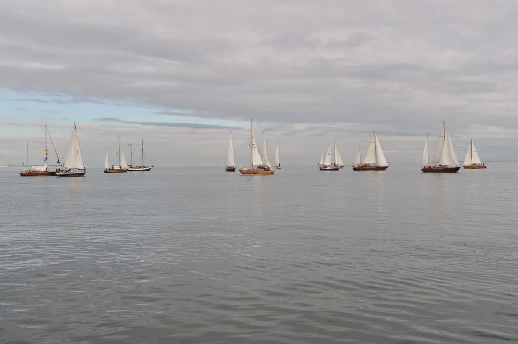 """próchno i rdza ""Próchno i Rdza"" – zlot łódek o klasycznych konstrukcjach z drewna i stali opanował Gdynię LTF 6101"
