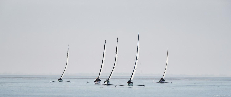 zuzanna rybicka, Siedem medali Polaków na Mistrzostwach Świata Juniorów 2019 w klasie DN i IO zuzanna rybicka bojery