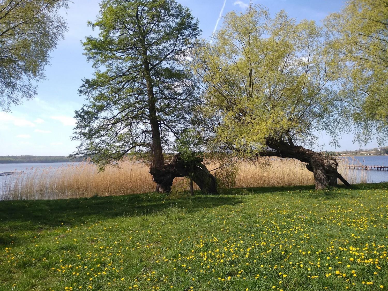 zamieszkaj i żegluj nad pięknym, czystym jeziorem Zamieszkaj i żegluj nad pięknym, czystym jeziorem jermak1