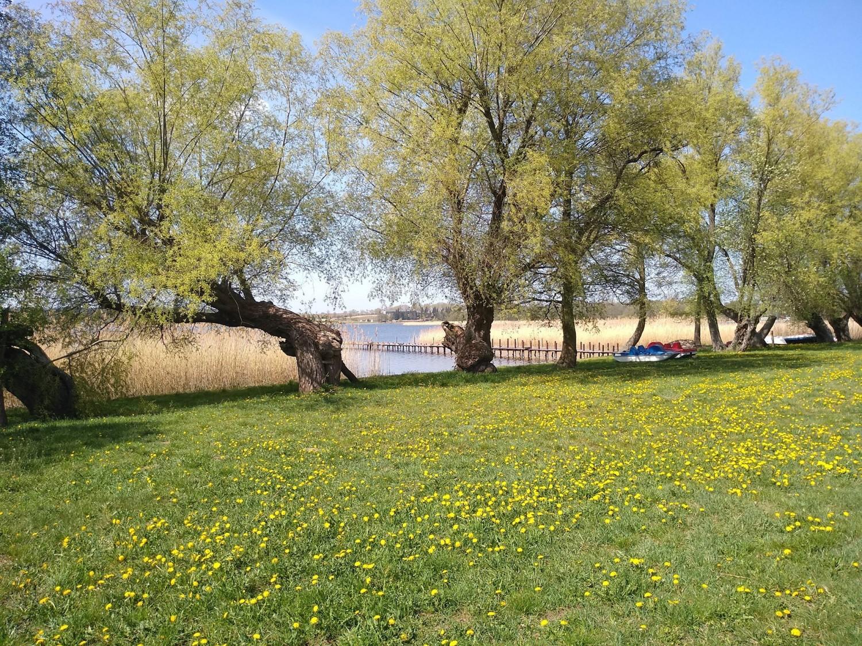zamieszkaj i żegluj nad pięknym, czystym jeziorem Zamieszkaj i żegluj nad pięknym, czystym jeziorem jermak3